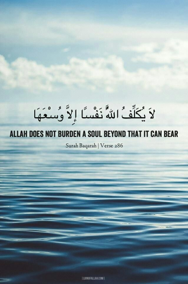 #islam Allah does not burden a soul beyond that it can bear | Surah Baqarah | Verse 286