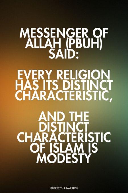islam is modesty