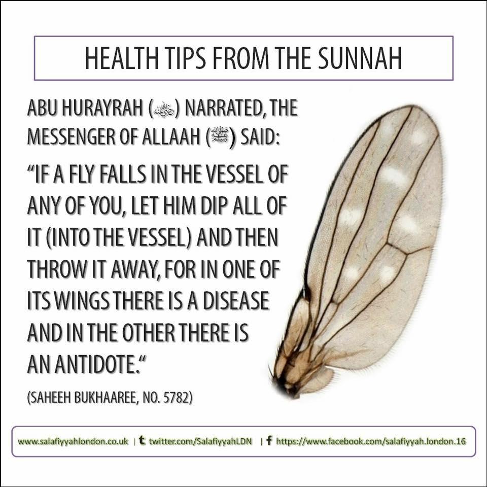 health-tips-from-sunnah
