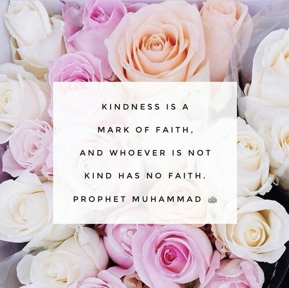 Kindness is a mark of faith and whoever is not kind has no faith